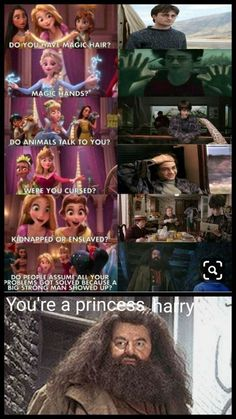 Realized this only yesterday. lol Your a princess Harry.You can find Harry potter memes and more on our website.Realized this only yesterday. lol Your a princess Harry. Harry Potter Disney, Images Harry Potter, Mundo Harry Potter, Harry Potter Puns, Harry Potter Funny Quotes, Harry Potter Last Movie, Harry Potter Book 8, Harry Potter Things, Harry Potter Universal