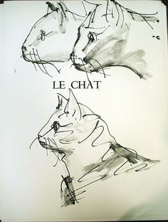 pablo picasso cat sketches
