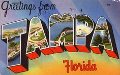 Greetings from Tampa, Florida - Large Letter Postcard by Shook Photos, via Flickr