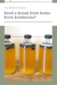 Stop & Start Brewing Kombucha - 3 Things to Do if you Need to Take a Break from Brewing Kombucha How To Brew Kombucha, Kombucha Tea, Kombucha Brewing, Beer Brewing, Home Brewing, Homemade Liquor, Home Fix, Fermented Foods, Spring Break
