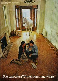 white horse whiskey 1971