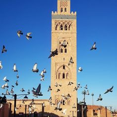 Are you planing to Visit Morocco and especially Marrakech 2020/2021.. . . . . #marrakechdeserttrips #moroccotrip #visitmorocco #visitmarrakech #holiday #traveltomorocco #marrakech #traveltomarrakech #morocco Visit Marrakech, Visit Morocco, Morocco Travel, Solo Travel, Us Travel, Desert Tour, Small Group Tours, Tour Operator, Travel Agency