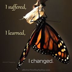 I suffered, I learned, I changed. -Ashraf Haggag