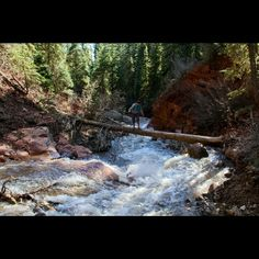Cascade Creek outside of Durango, Colorado is beautifully carved from years of mountain runoff!