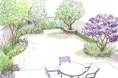 Family garden design | The mature lilac trees and apple have been retained whilst other overgrown shrubs removed, and new ornamental trees planted for all year interesting foliage and bark, and to bring an element of privacy to the garden.