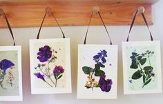 Pressed flower cards - 15 Homemade Gifts That Kids Can Make for Teachers I Homemade Teachers Gift Ideas - ParentMap
