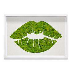 Kiss Moss (Framed) from Live Art by Oliver Gal on Gilt Moss Wall Art, Moss Art, Diy Wall Art, Framed Wall Art, Painting Edges, Painting Frames, Moss Graffiti, Moss Decor, Organic Art