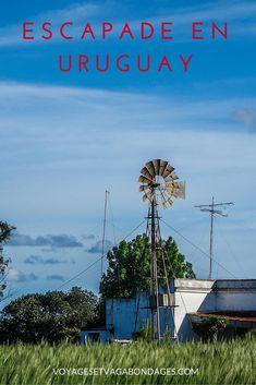 Escapade en Uruguay, à la découverte de la campagne uruguayenne, de Montevideo et de Colonia.