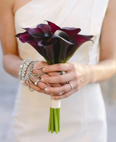 Love this bouquet, but with white instead! Simple and beautiful