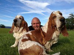 The Basset Hounds - My Faithful Scoundrels