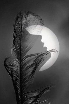 Information Alert : ایک مدت سے کہیں گم ہے میرا نصف وجود ایک مدت سے میری نیند جدا، خواب جدا Double Exposure Photography, Moon Photography, Surrealism Photography, Beautiful Moon, Illusion Art, Silhouette Art, Moon Art, Dark Art, Fantasy Art