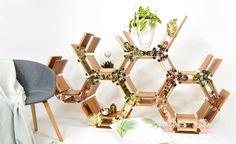 Honeycomb Creeper Shelf by Leg Studios