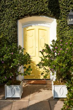 """One Kings Lane: """"Talk about curb appeal. ✨💛✨Explore our assortment of planters to dress up your home by tapping the image or the link in our bio. Backyard Renovations, Mug Design, Inspiration Design, Entry Doors, Entrance, Entryway, Whimsical Fashion, Front Door Decor, Outdoor Rugs"""