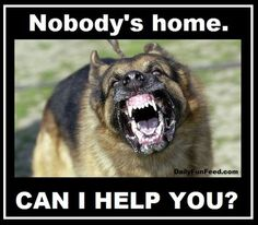 Nobody-Is-Home-Can-I-Help-You
