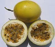 maracuya - passion fruit  PARCHA