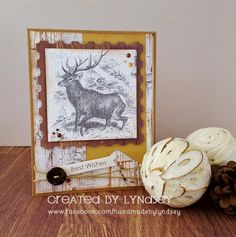 Best Wishes - First Edition Wild at Heart by design team member Lyndsey