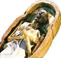 Afbeeldingsresultaat voor egypte farao kist