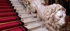 Grand Hotel Plaza Rome Italy | Book Special Offers Zone: Spagna Rome Travel, Italy Travel, Lion Monument, Green Marble, Beautiful Hotels, Grand Hotel, Rome Italy, Hotels And Resorts, Architecture Details