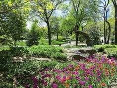 Central Park, New York City. May 2, 2013.