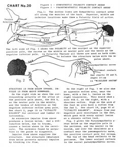 Polarity Therapy Volume 2, Book 6, Chart 20