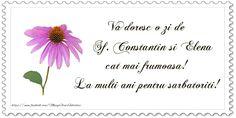 Sf Constantin, Mai, Arabic Calligraphy, Celebrations, Happy Birthday, Events, Holidays, Happy Brithday, Holidays Events