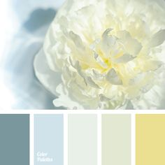 Glowing cold palette, based on blue-pearl and silver shades, is harmoniously complemented by gray-blue and cold golden color. This scheme is well-suited fo.