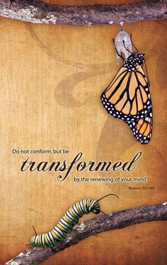 Transformed Scripture print, Romans Art Print by Kristen Ramsey - X-Small Bible Art, Bible Scriptures, Bible Quotes, Butterfly Quotes, Butterfly Symbolism, Never Be Alone, Christian Inspiration, Word Of God, Christian Quotes