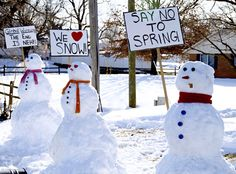 """""""We love snow!"""" """"Will work for freezer space"""" Snowman Images, Snowmen Pictures, Snowmen At Night, Frosty The Snowmen, I Love Winter, Winter Fun, Winter Ideas, Winter Time, Inference Pictures"""