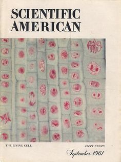 Scientific American September 1961 Cover - Featuring 'The Living Cell' Max Huber, Herbert Bayer, Leo Lionni, Graphic Eyes, Milton Glaser, Saul Bass, Graduation Year, Charley Harper, Scientific American