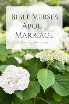Bible verses about marriage for weddings, anniversaries, & everyday life. | love | faith | dating | relationship | engaged | engagement | biblical | wedding | anniversary | gift | card | invitation |