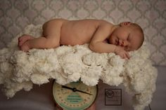 Puff Blanket Newborn Photography Prop 2x2 Baby Photo by BabyBirdz, $65.00