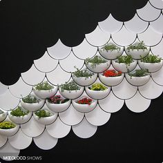Wall Tiles You Can Grow Things In