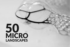 Micro Landscapes by DesignSomething on @creativemarket