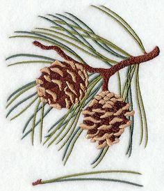 Norway Pine Leaf