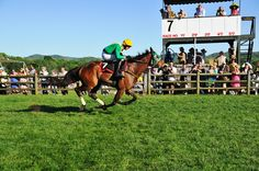 Iroquois Steeplechase (may)