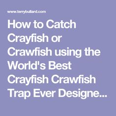 how to make a crayfish trap