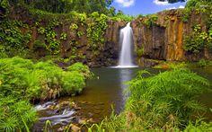 Jungle Waterfall | Jungle waterfall wallpaper - Nature wallpapers - #12485