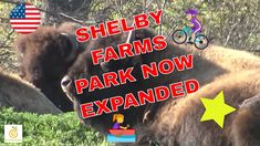 Shelby Farms Park Now Expanded in Memphis TN 🚣 🏃🐶🌿🚴🚵