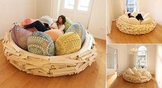 Sleep at The Giant Bird Nest
