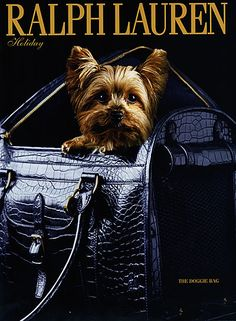 Ralph Lauren Holydays Ad From 2006.