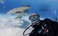 http://airows.com/these-are-the-12-best-selfies-ever/ And Dutch Shark Society's photographer made one of them!