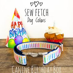 What better way to celebrate your dogs birthday than with a birthday Treat Box?!