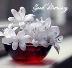 Gud Morning Images, Good Morning Coffee, Good Morning Flowers, Good Morning Picture, Good Morning Messages, Good Morning Good Night, Morning Pictures, Good Morning Wishes, Good Morning Quotes