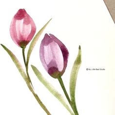 Check out this process video of Watercolor Tulips by Art Philosophy Design Team Member Garima. Watercolor Paintings For Beginners, Watercolor Video, Watercolor Projects, Watercolor Techniques, Watercolor Artists, Watercolor Portraits, Watercolor Flowers Tutorial, Floral Watercolor, Plants Watercolor