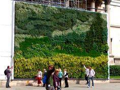 """""""Campo de Trigo com Ciprestes"""" - Van Gogh - Galeria Nacional da Inglaterra & GE"""