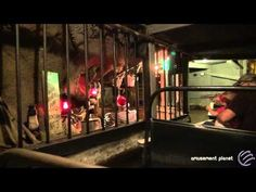 Flooded Mine - Lights On [Silver Dollar City] - YouTube
