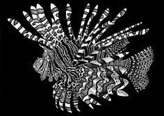 Tim Jeffs Animal Drawings - Imgur