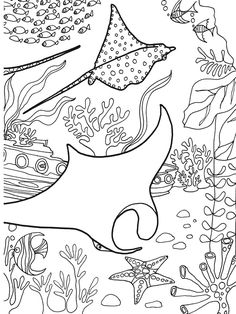 Printable coral reef coloring page. Free PDF download at