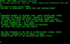 Colossal Cave Adventure - this is the first computer game that I remember. There were no graphics. Everything was left to your imagination.