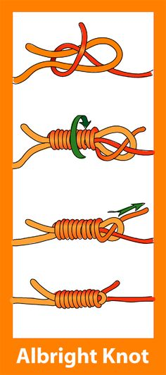 File:Albright knot diagram.png
